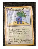 Pokemon Card Art