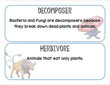 Pokemon-Themed Science Vocabulary Word Wall
