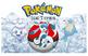 Pokemon Type Themed Team Banners