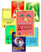 Pokemon Zones of Regulation/Break Cards (Editable PPT)