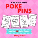 Pokey Push Pins