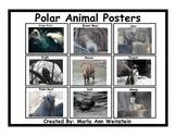 Polar Animal Posters