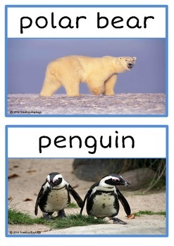 Polar Animals Photo Set