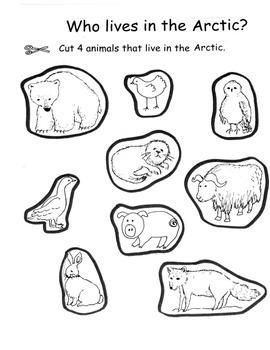 Polar Animals Arctic Animals Pack:  Books, Writing, Activities, etc. 27 pg. PACK