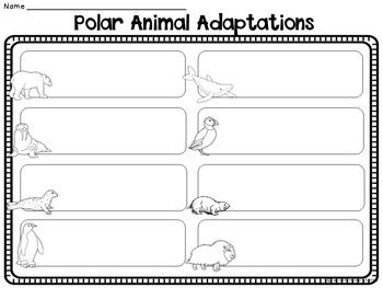 Arctic Antarctic Polar Animals Nonfiction Reading