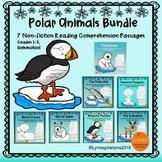 Winter Animals - Polar Animals Reading Comprehension Passages - Bundle