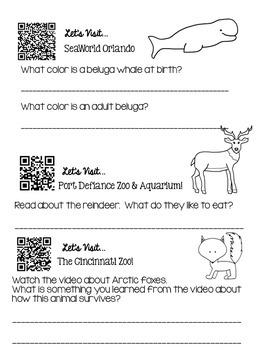 "Polar Animals Living in Zoos - QR Code ""Quest""/Exploration"