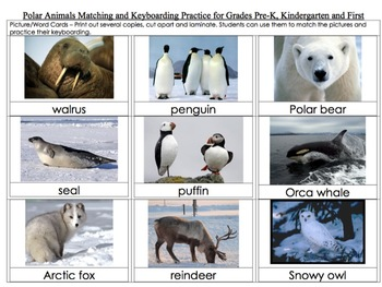 Polar Animals Matching and Keyboarding Practice