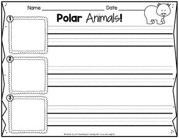 Polar Animals Scrambled Sentences