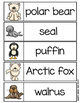 Polar Animals Word Wall (includes Arctic and Antarctic Animals)