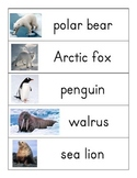 Polar Animals word wall