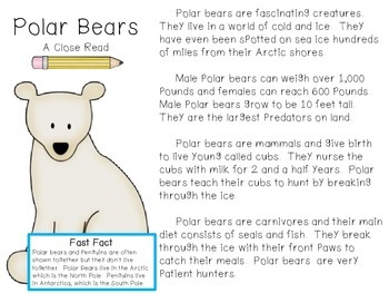 Polar Bear: A Close Read by The Schroeder Page | Teachers Pay Teachers