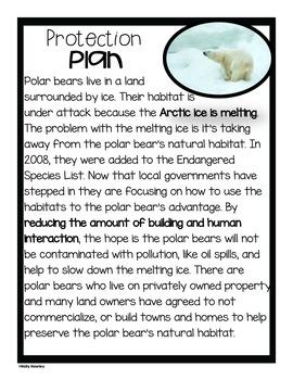 Polar Bear-A Research Project