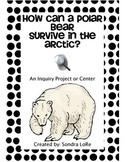 Polar Bear Adaptation Experiment