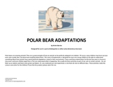 Polar Bear Adaptations: A science lesson for preschool, k, or 1st