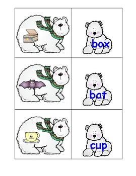 Polar Bear CVC