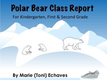 Polar Bear Class Report