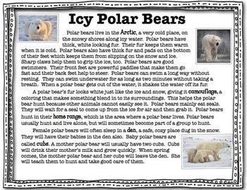 Polar Bear Close Read