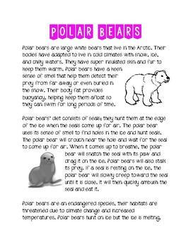 Polar Bear Context Clues Sampler