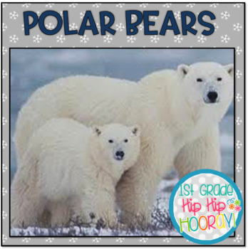 Polar Beas!!  Informational Text, Crafts, Snacks