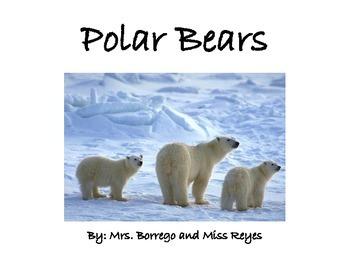 Polar Bear Expository Book