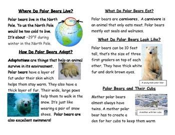 Mini Polar Bear Book with Fact and Opinion Activity