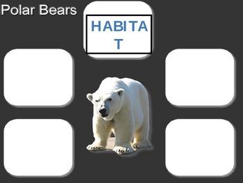 Polar Bear Habitat Poster
