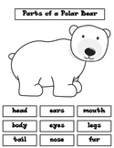 Polar Bear: Label Body Parts