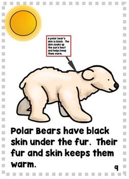 Polar Bear Nonfiction Literacy and Math Mini Unit