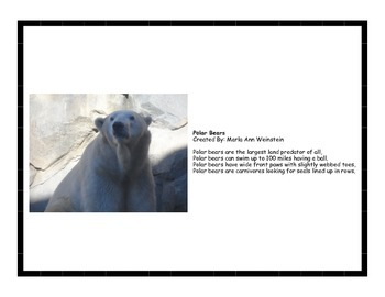 Polar Bear & Penguin Activity Pack