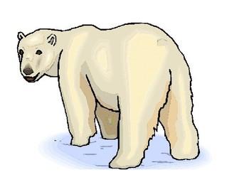 Polar Bear, Polar Bear What Will You Wear? choice board and activity