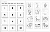 Polar Bear, Polar Bear, What do you hear? Book companion/ELA & NGSS activities
