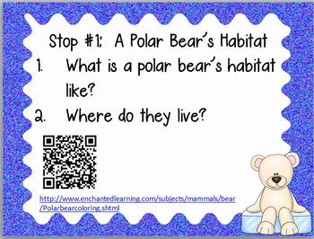 January Centers Polar Bears QR Non-fiction Task Cards