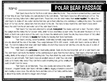 Polar Bear Reading and Writing