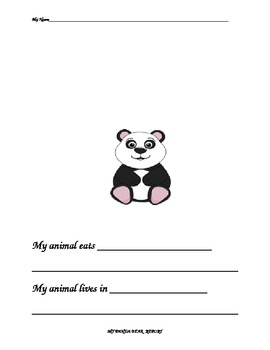 Polar Bear Report