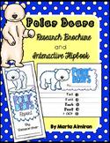 Polar Bear Research Brochure, Flipbook, and More