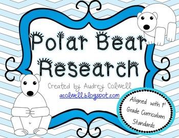 Polar Bear Research Q&A