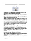 Polar Bear - Review Article Questions Vocabulary Word Search