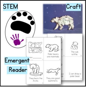Polar Bear Kindergarten Science NGSS