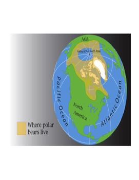 Polar Bear Text Features