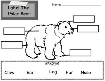 Polar Bear Unit Packet of Fun! by Nicole McAllister | TpT
