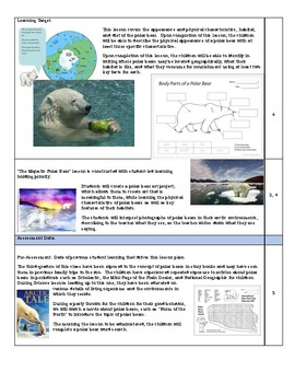 Polar Bear Unit Plan Lesson Plan 1st First Grade The Majestic Polar Bear