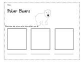 Polar Bear Verbs