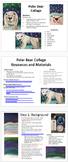 Winter Polar Bear Northern Lights K-8 Art Science Social Studies Lesson Plan
