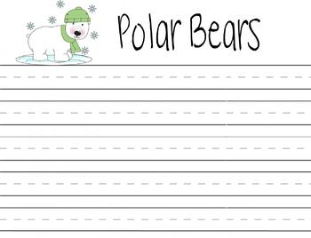 Bear Essays (Examples)
