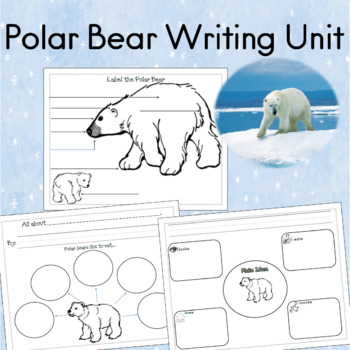 1731 best Winter Resources   Activities from TpT images on ...