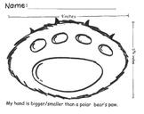 Polar Bear math comparisons