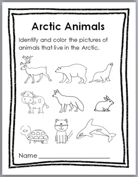 Polar Bears Science, Movement, Literacy & Math -Polar Bear Unit -Winter Activity