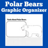 Polar Bears Research Template | Polar Bears Graphic Organizer