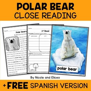 Close Reading Polar Bear Activities